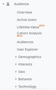 audience google analytics